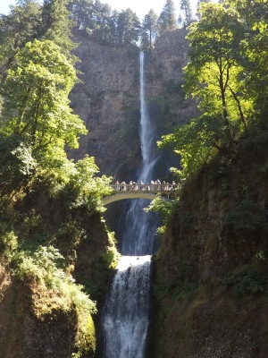 611 ft drop of Multnomah Falls